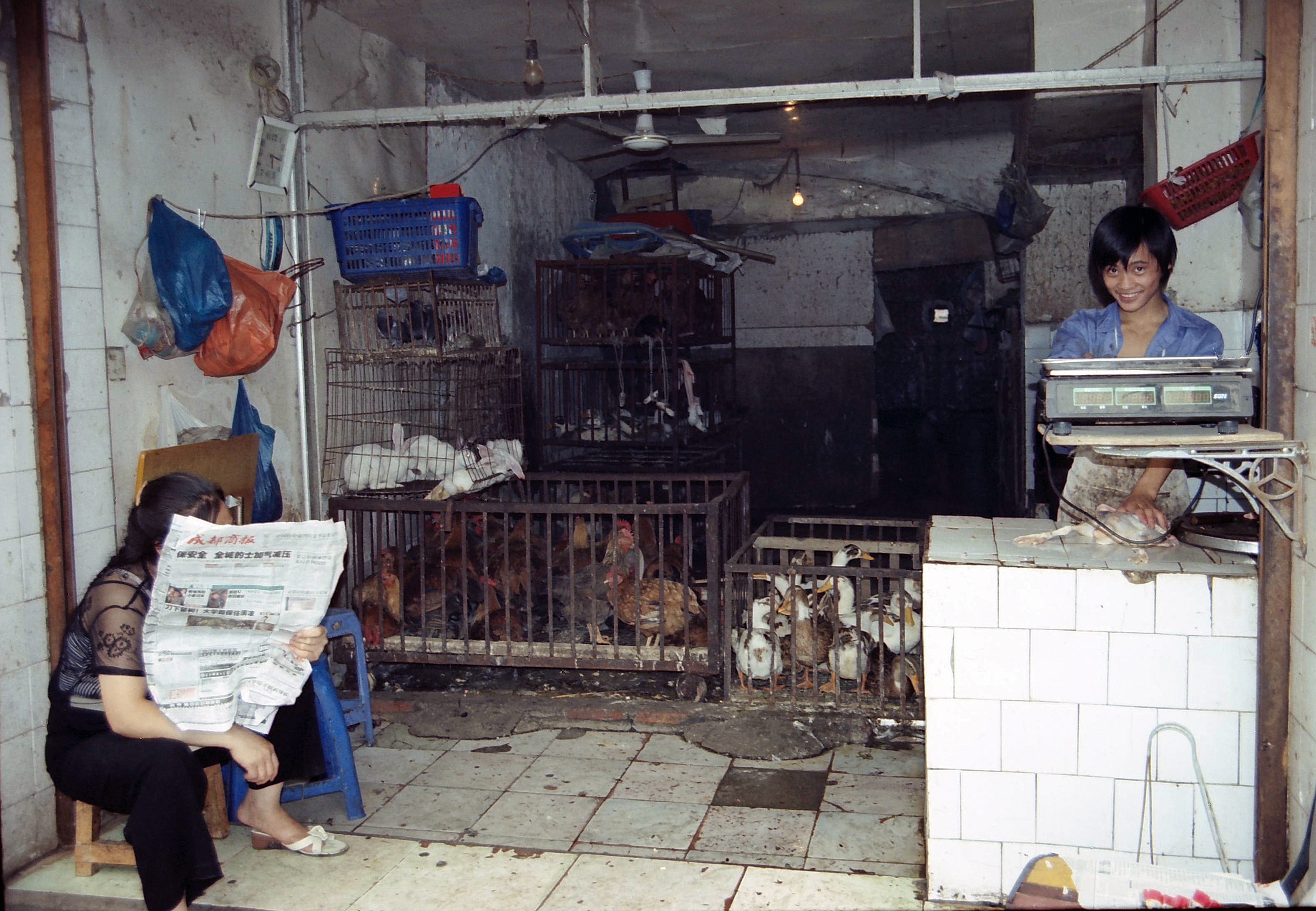 chicken shop, Chengdu China.jpg
