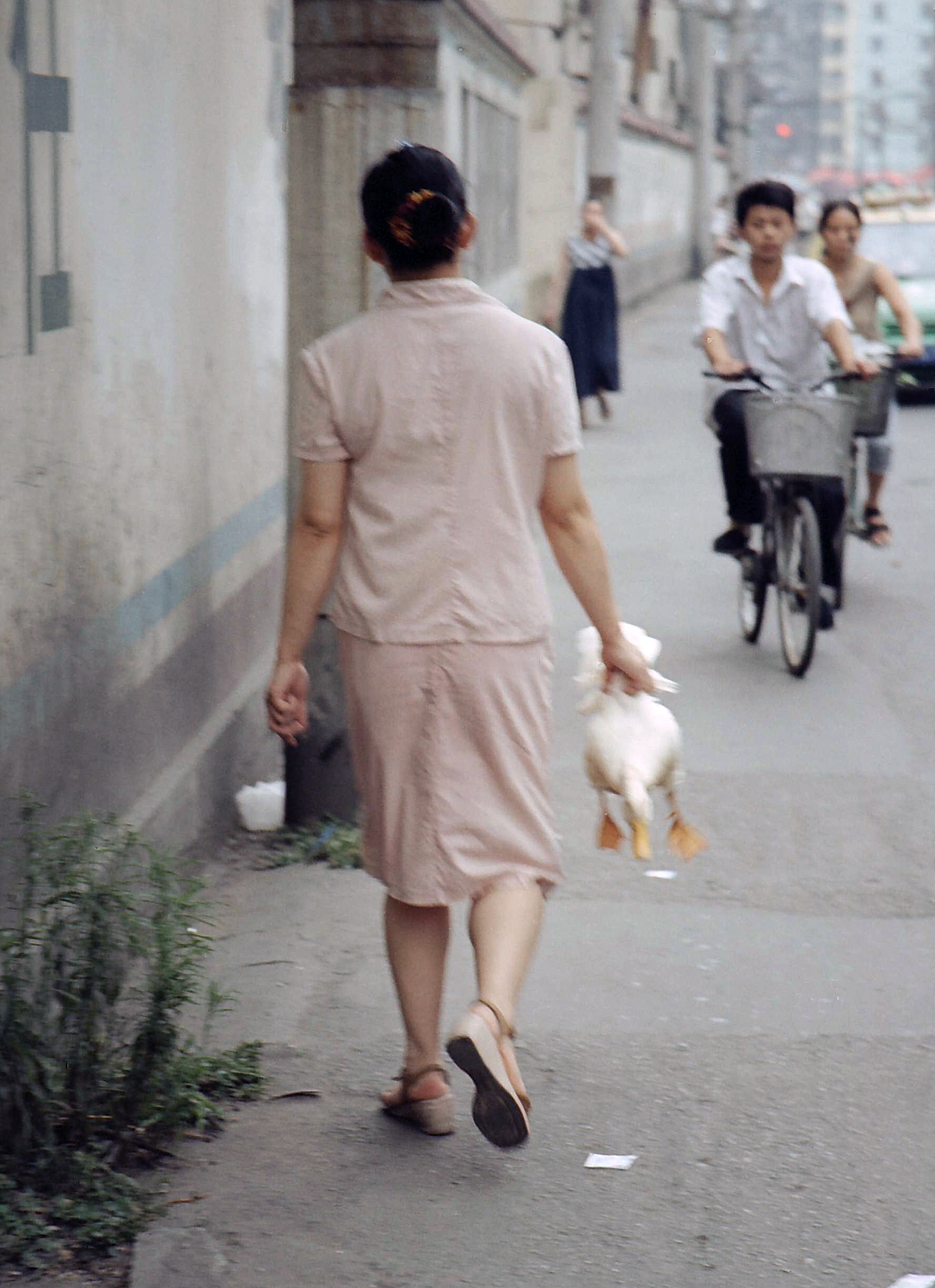 woman and duck, Chengdu China.jpg