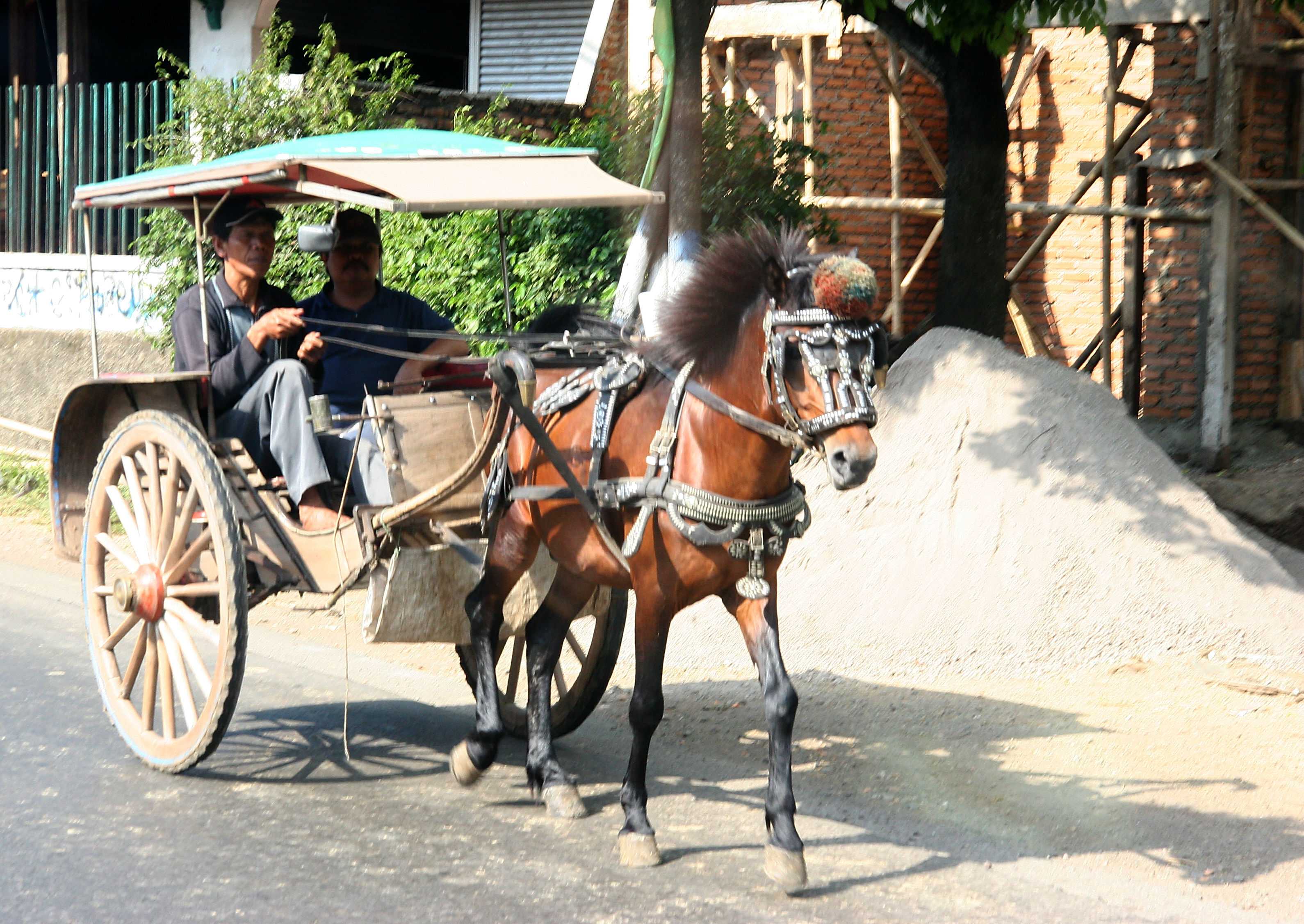 Horse-drawn carriage, Java Indonesia.jpg